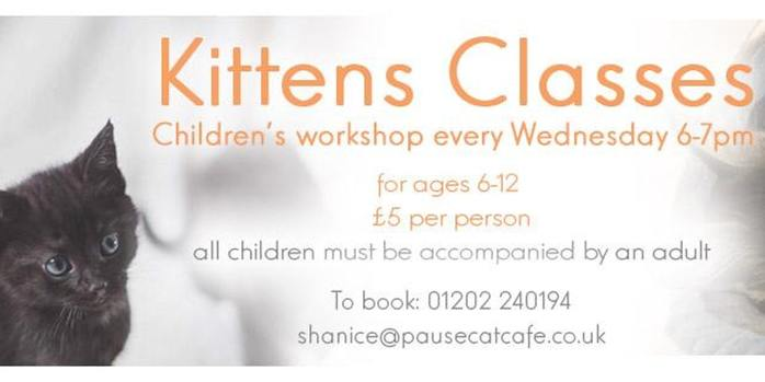 Kittens Classes